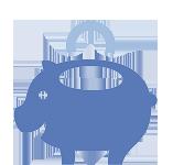 accounting-pig